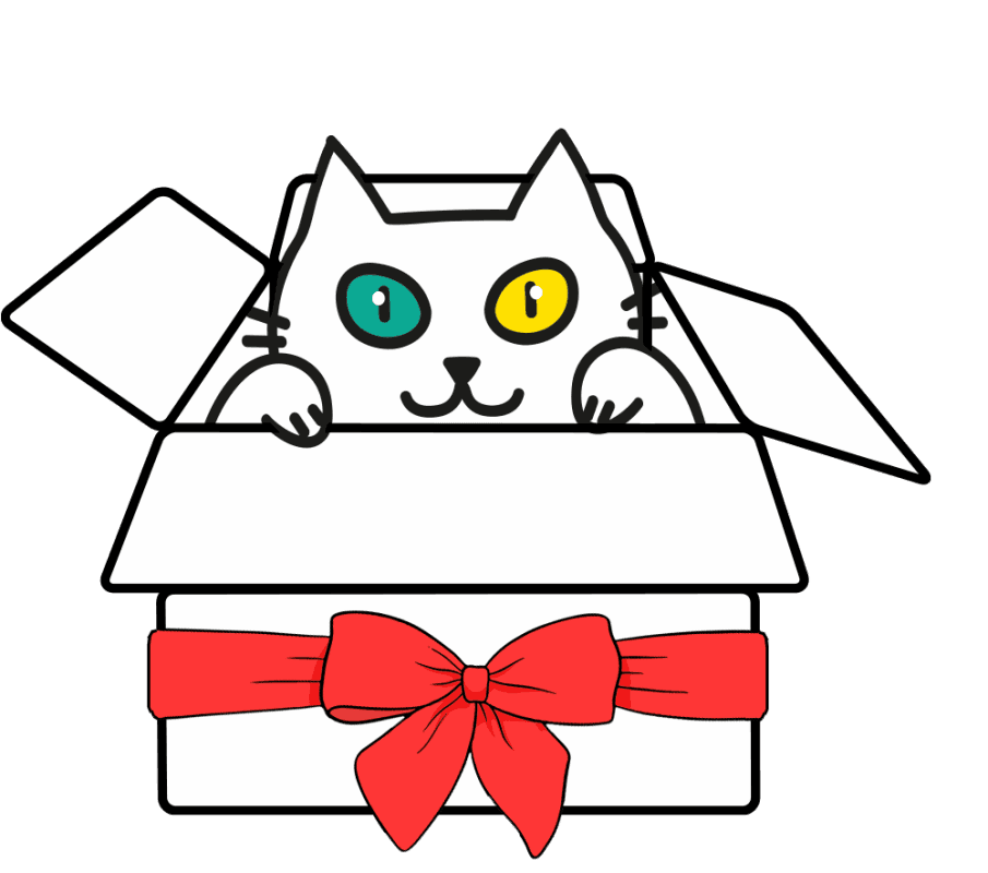 calcetines ecológicos regalo